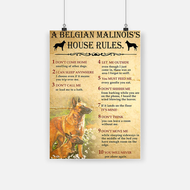 A belgian malinois's house rules poster 2
