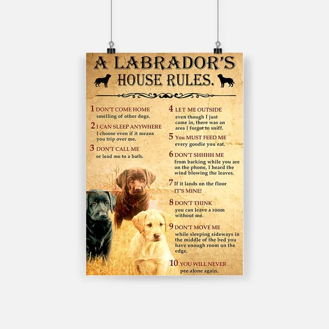 A labrador's house rules poster 4