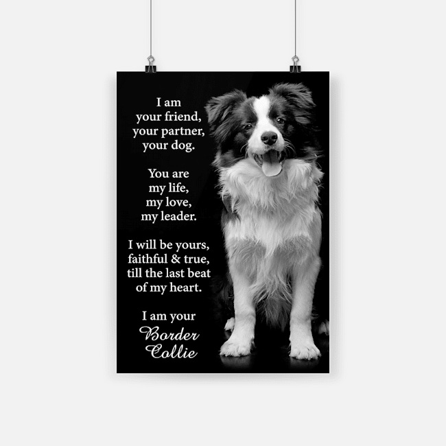I am your friend dog border collie poster 2