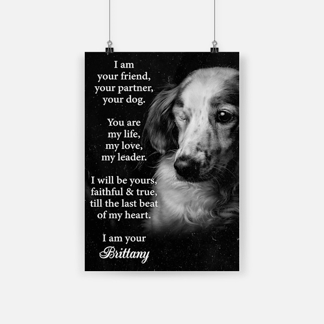 I am your friend dog brittany poster 4