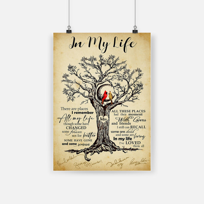 Cardinal bird in my life i've love them all poster 2