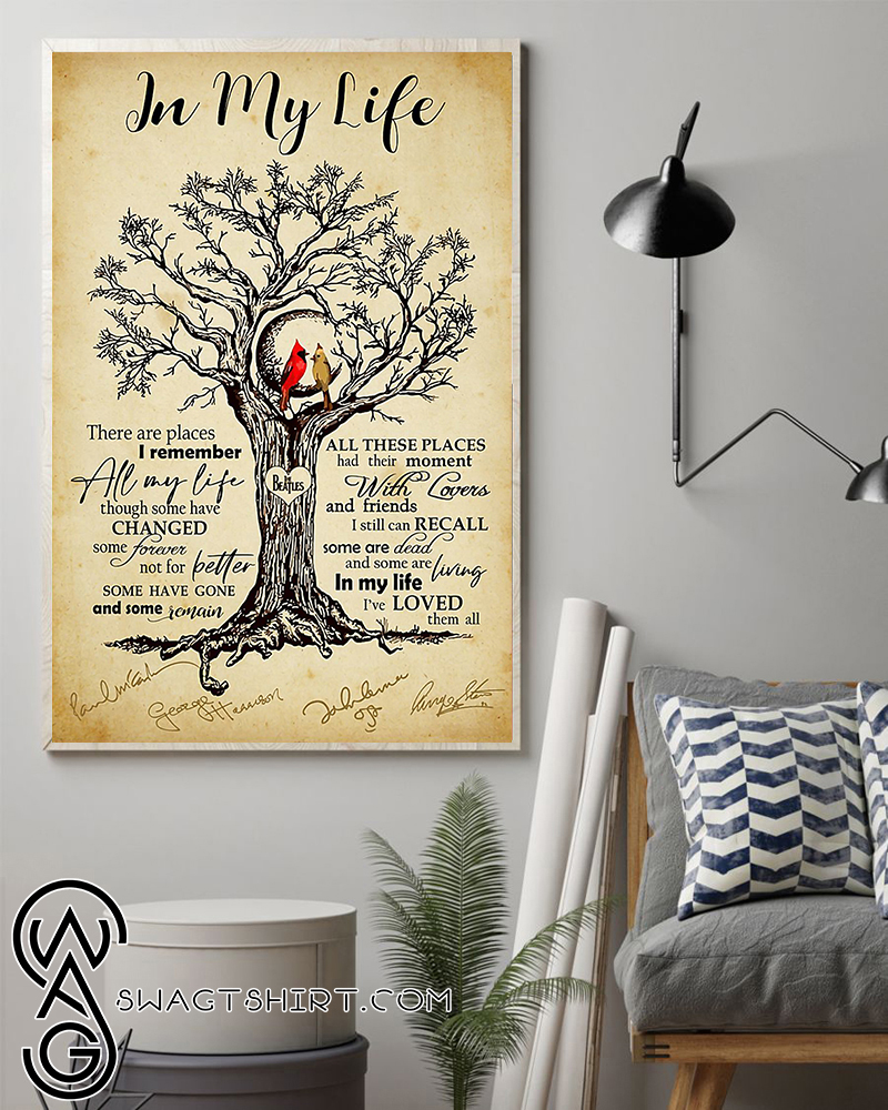 Cardinal bird in my life i've love them all poster
