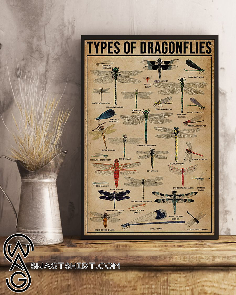 Types of dragonflies dragonfly knowledge poster