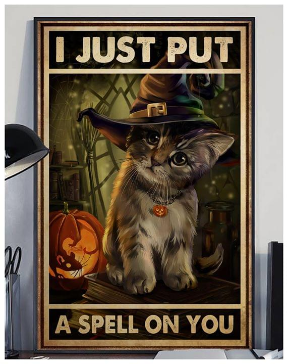 Cat wizard i just put a spell on you halloween poster 1