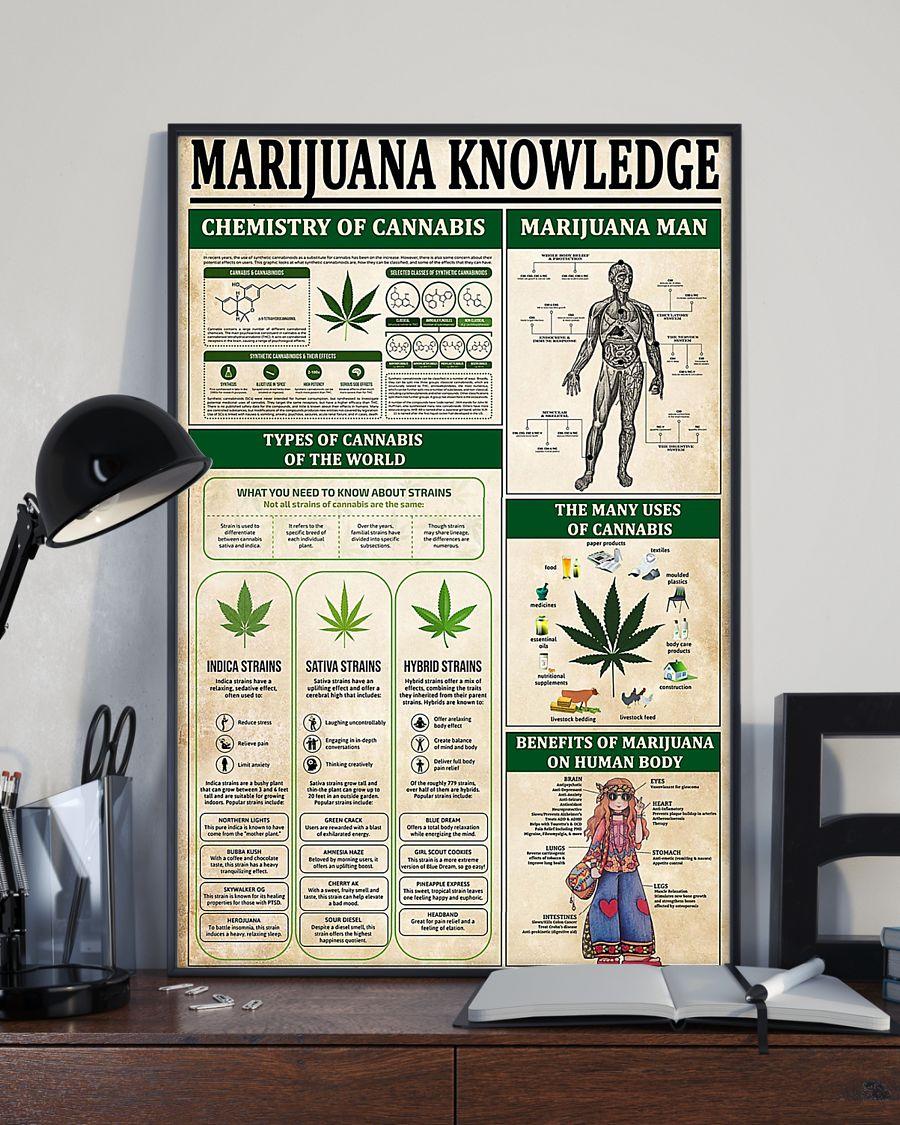 vintage marijuana knowledge poster 2