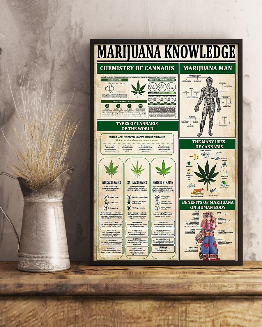 vintage marijuana knowledge poster 3