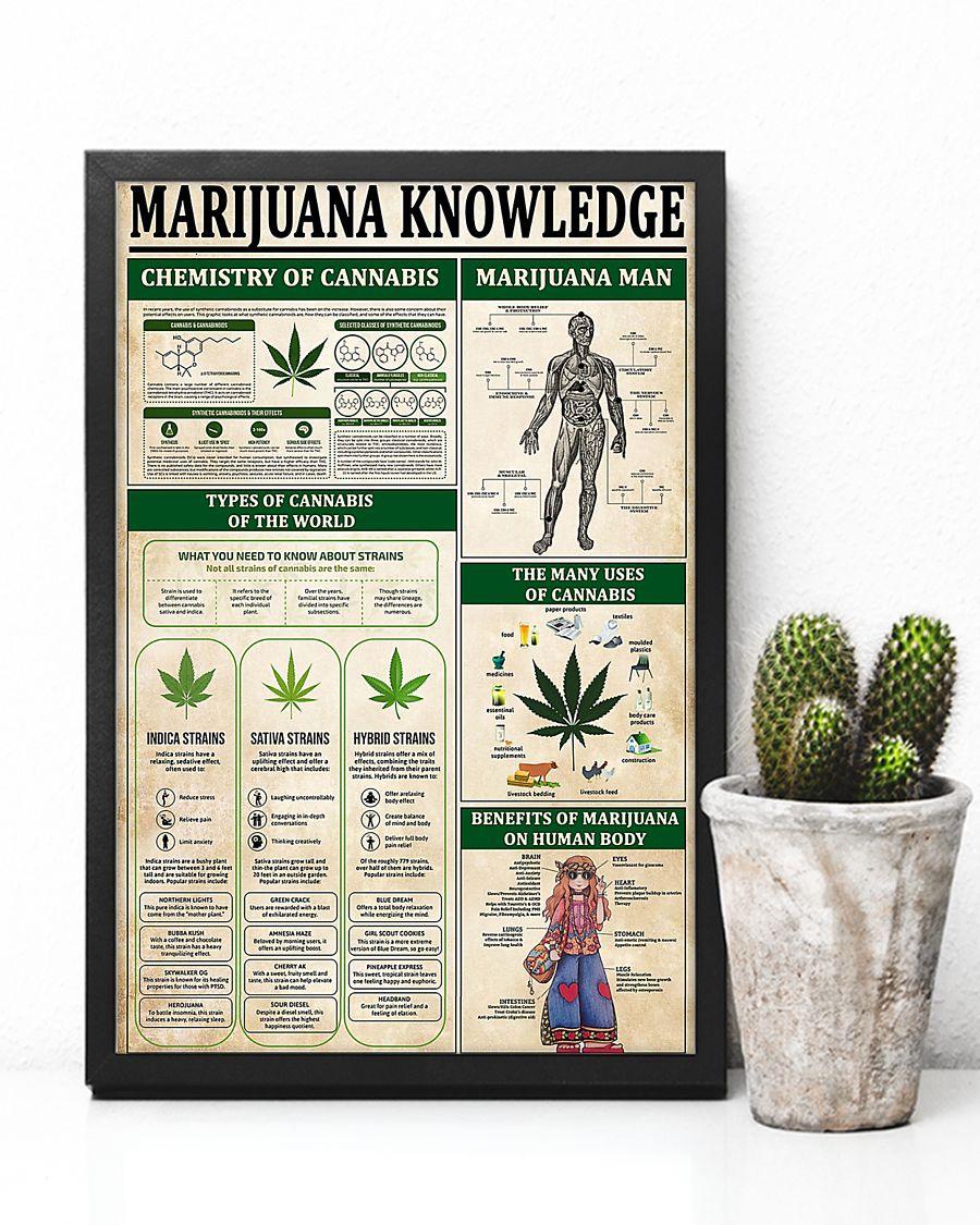 vintage marijuana knowledge poster 4