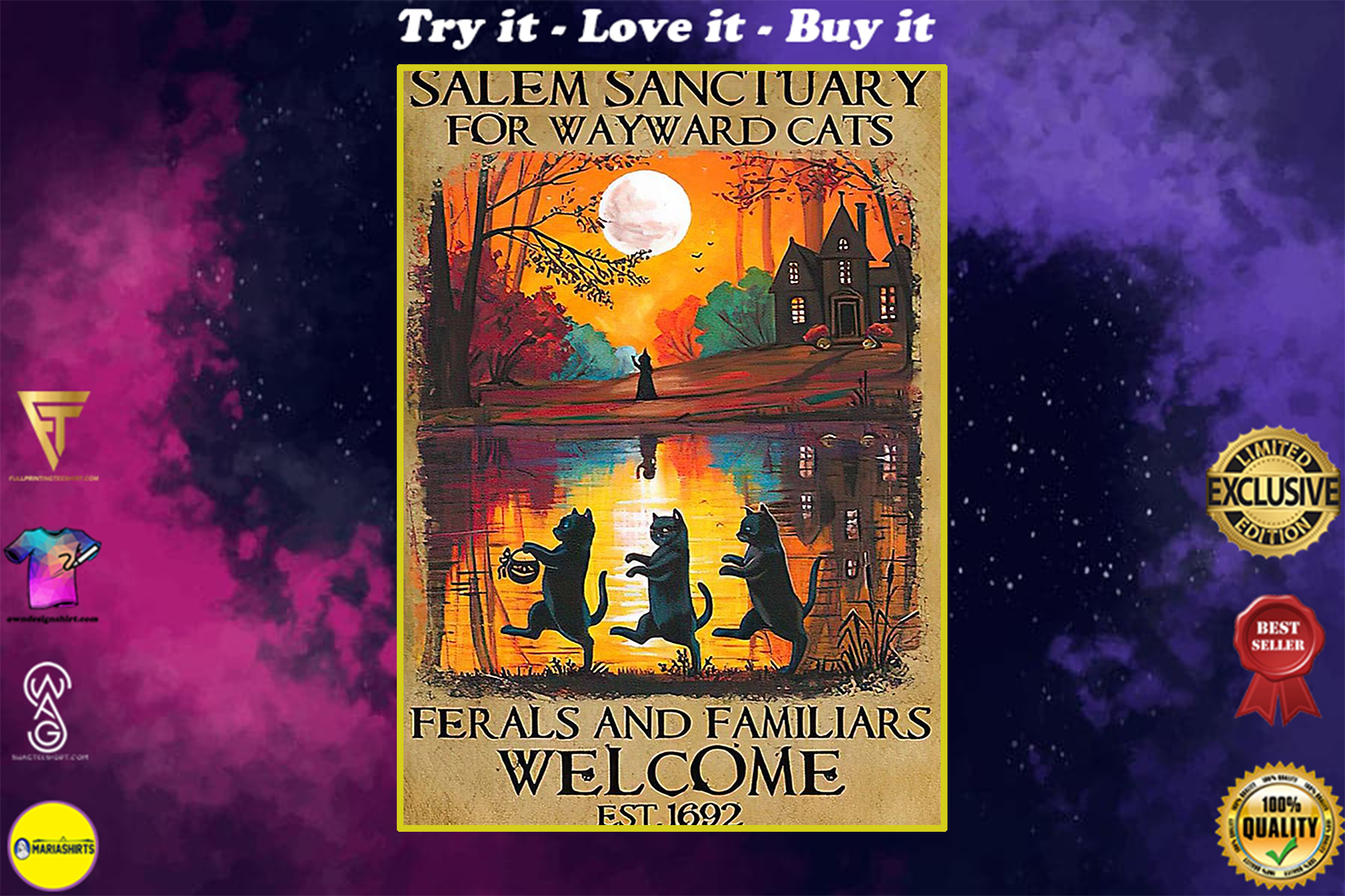 vintage salem sanctuary for wayward cats ferals and familiars welcome est 1692 black witch cat poster