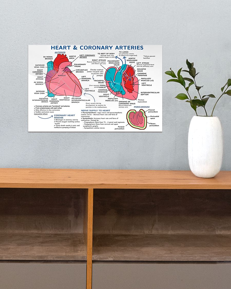 heart and coronary arteries cardiologist poster 5