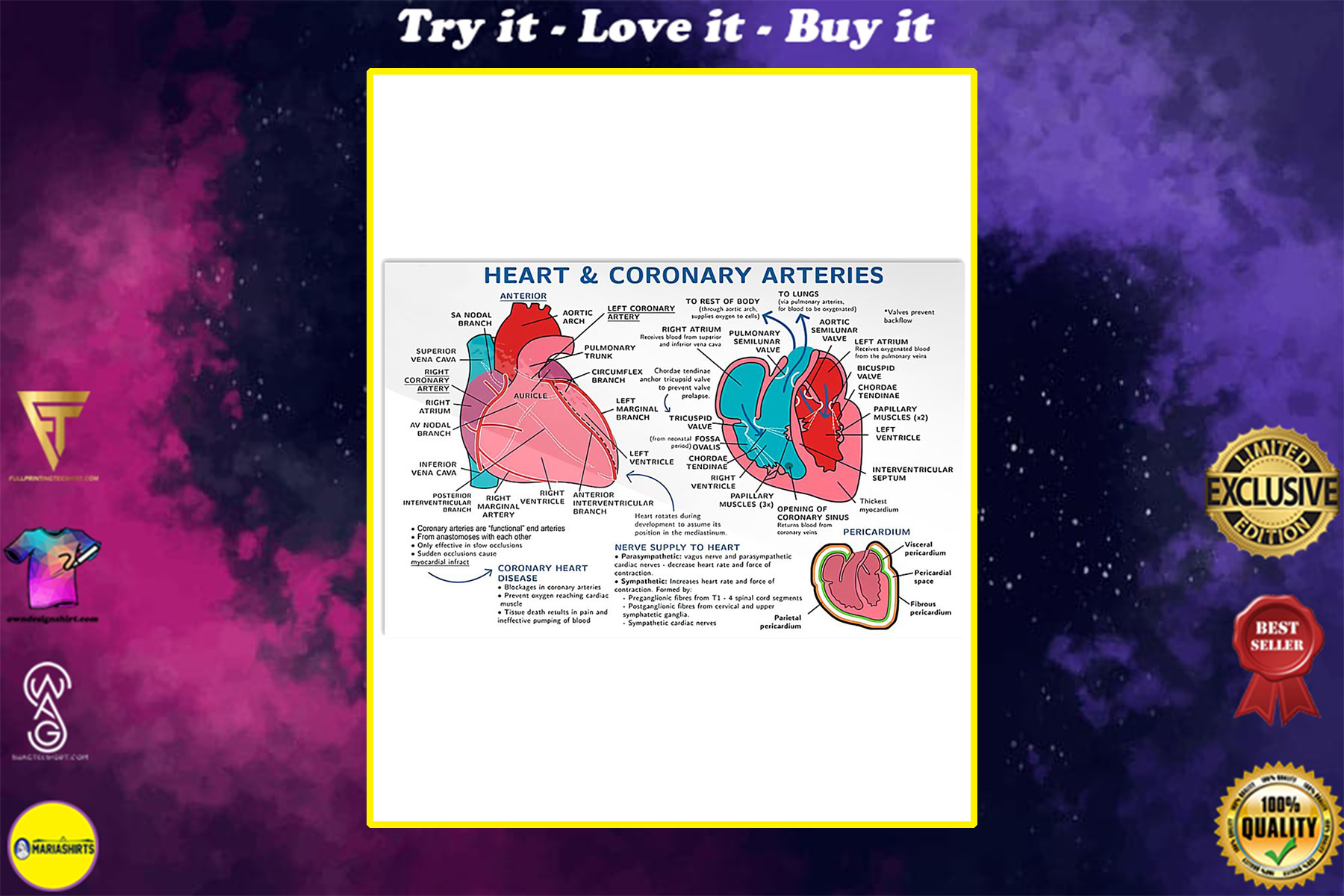 heart and coronary arteries cardiologist poster
