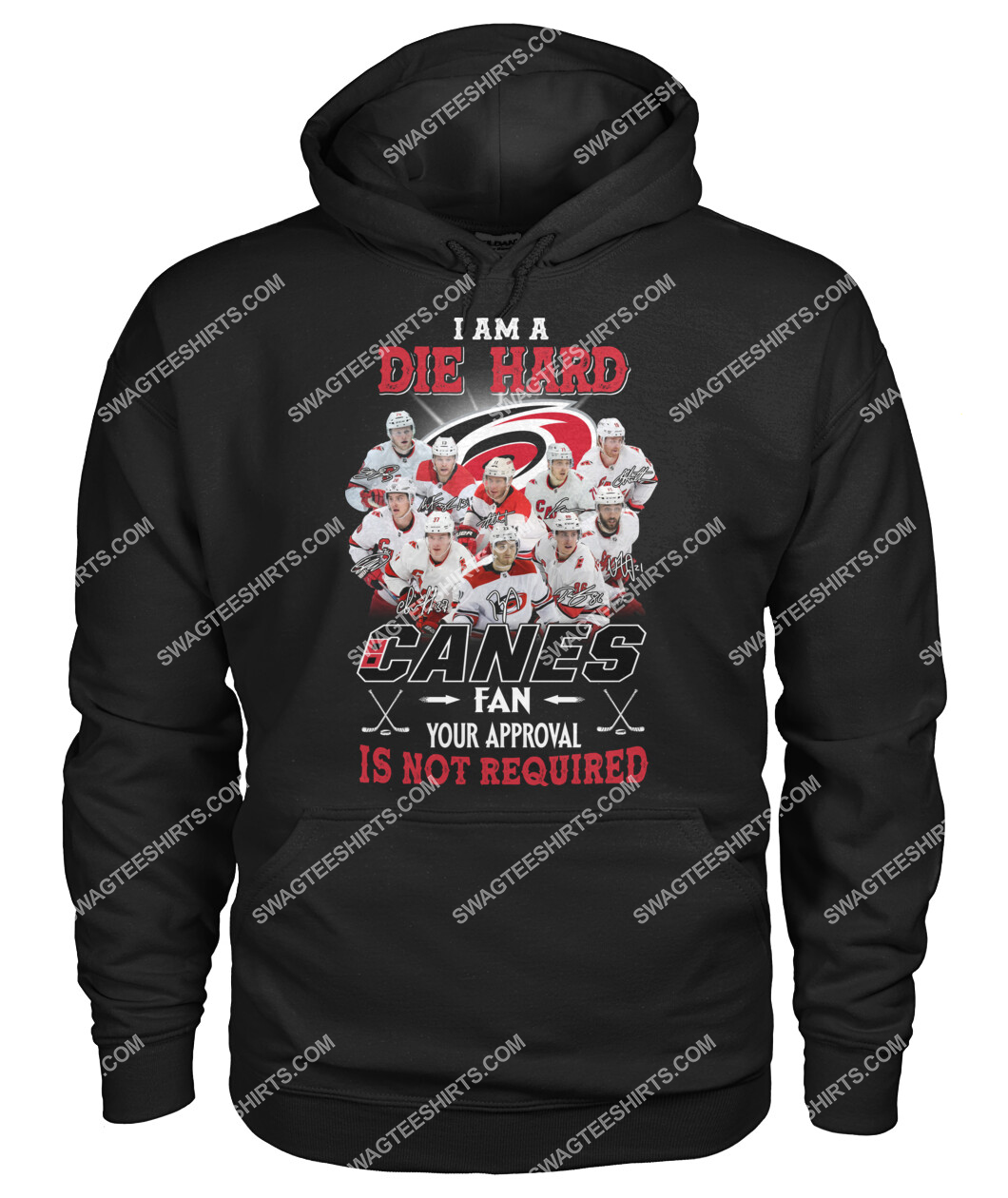 i am die hard fan your approval is not required carolina hurricanes hoodie 1