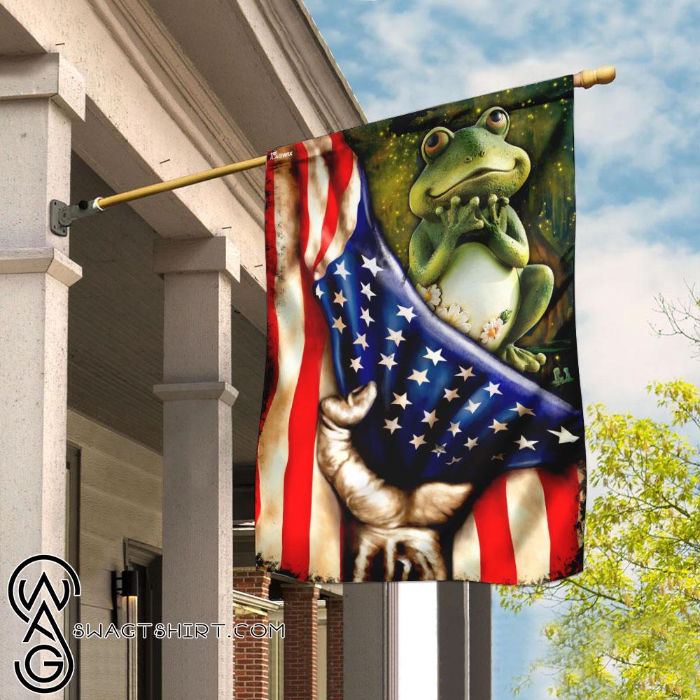 Frog american flag