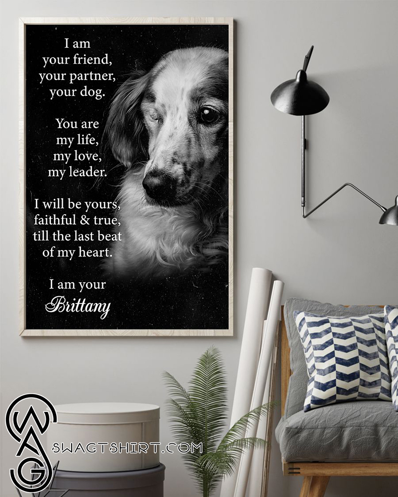 I am your friend dog brittany poster