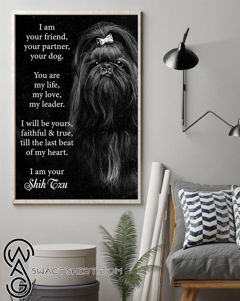 I am your friend dog shih tzu poster