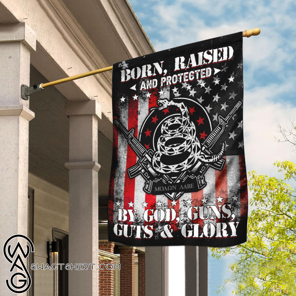 Born raised and protected by god guns guts and glory 2nd amendment flag